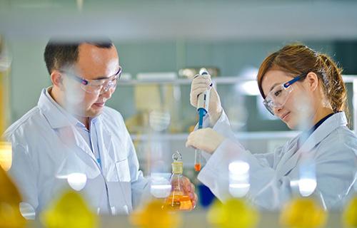 化学&药品行业